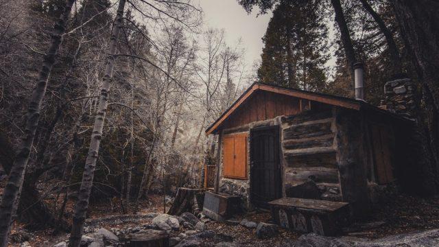 Restoring a Broken Cabin in My Hometown