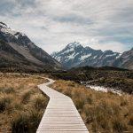 A Pathway Through the Mountain
