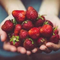 The Best Ways to Grow Strawberries